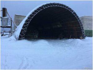 каркасник под снегом